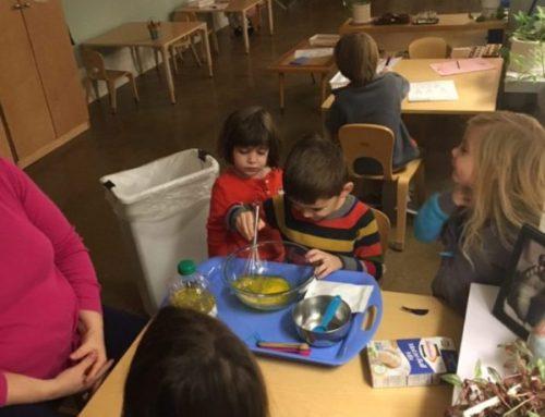 Cleveland Montessori Preschool and Elementary Program